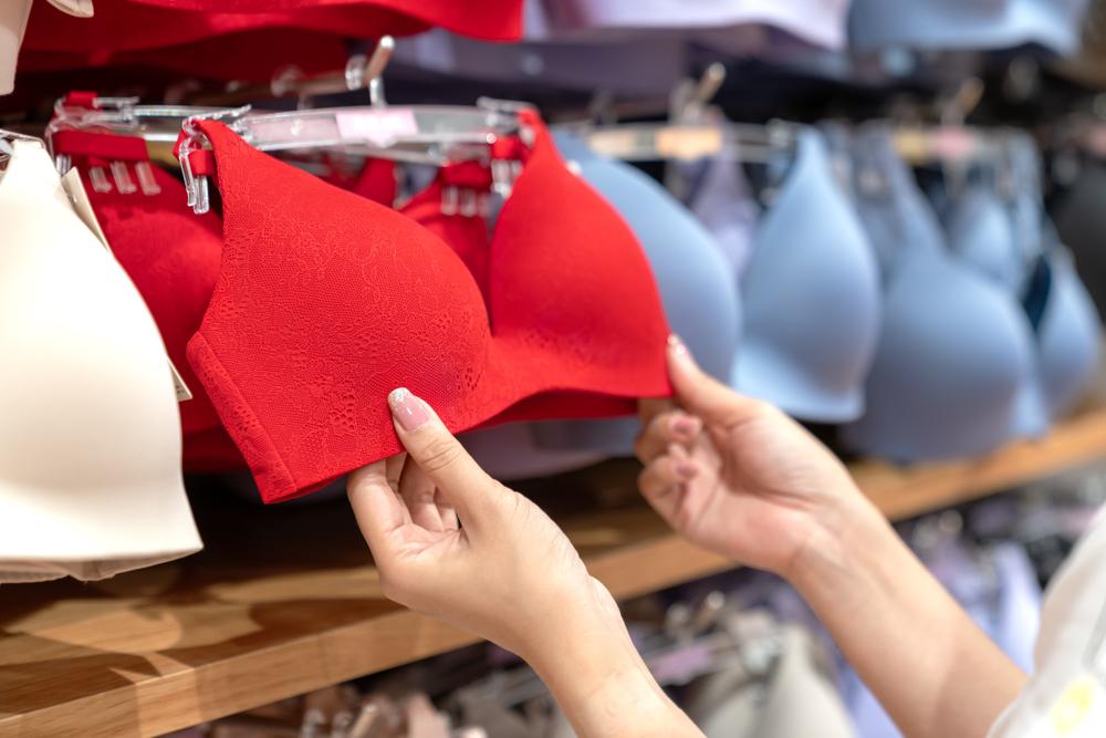 franquia de moda intima sutias prateleira