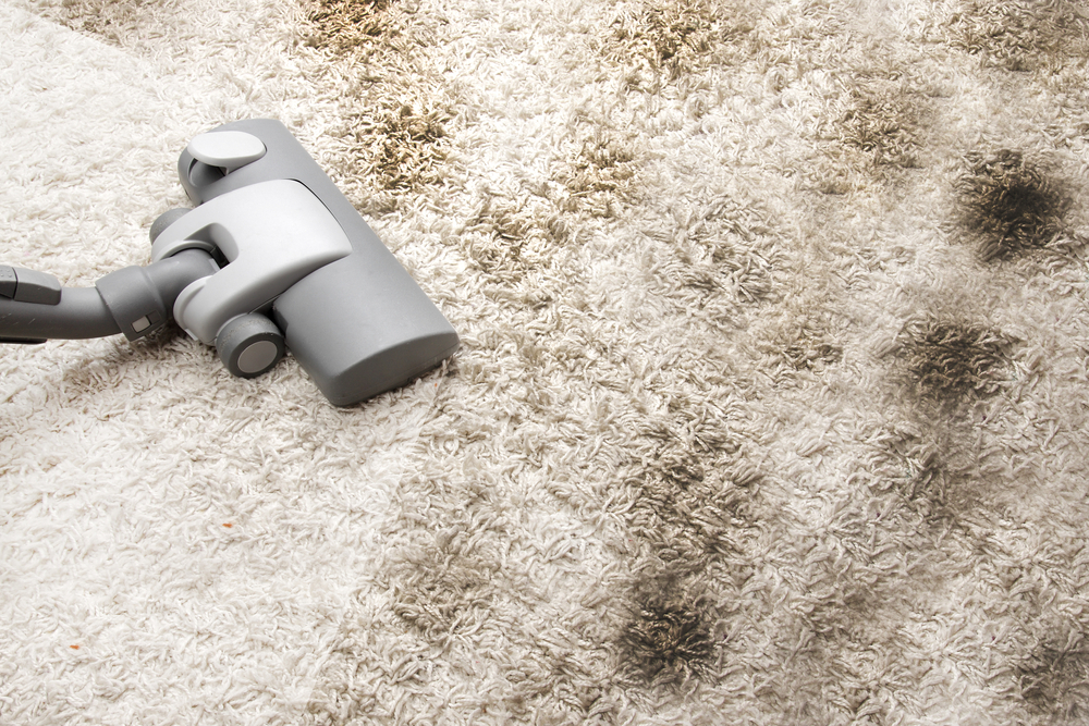 carpete sujo