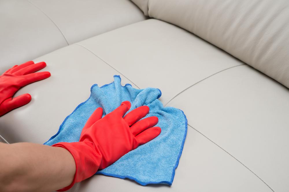 pessoa fazendo limpeza de um sofá