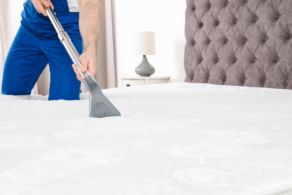profissional limpando colchão