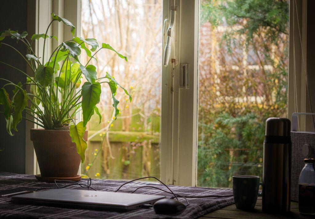 computador vista da janela franquias baratas home office