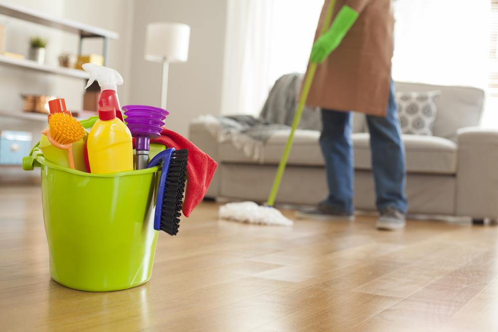 franquias de sucesso no brasil limpeza casa