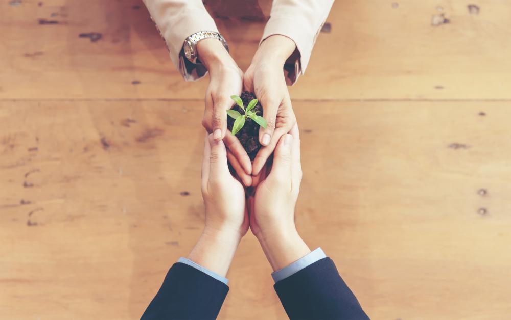 mãos de duas pessoas juntas segurando um pouco de terra com um ramo de folha