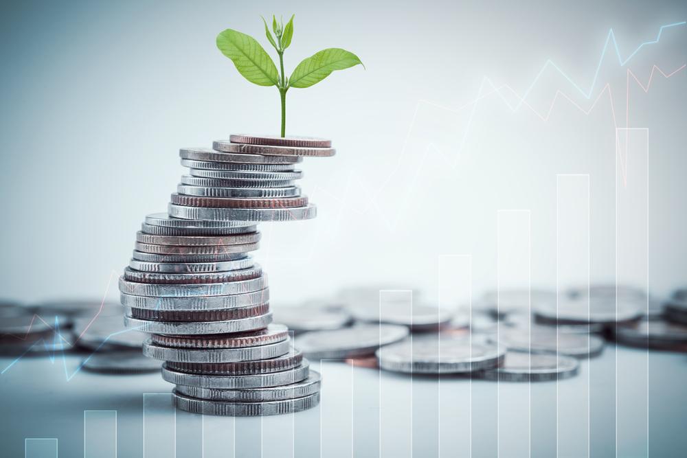 taxa de franquia: moedas e uma planta em cima