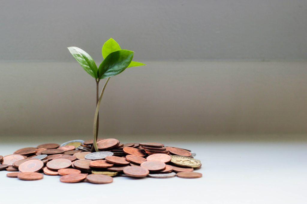 """Vemos um mudinha de árvore nascendo de um """"solo de dinheiro"""" - são várias moedas de coloração cobre simulando o solo (imagem ilustrativa). Texto: franquia corretora de seguros home office."""